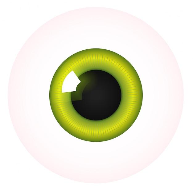 Occhio su bianco Vettore Premium