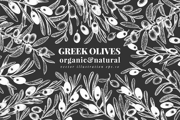 Oliva disegnata a mano illustrazioni di olive di vettore sul bordo di gesso. olio d'oliva vintage Vettore Premium