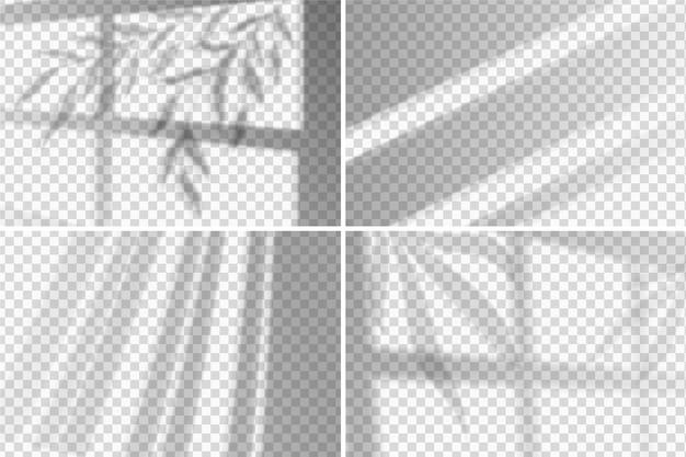 Ombre trasparenti sovrappongono lo stile dell'effetto Vettore gratuito