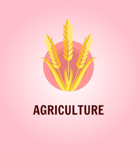 Orecchie della segale del grano sull'illustrazione rosa di vettore del cerchio Vettore Premium