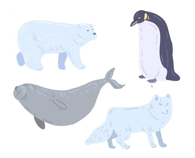 Orso bianco disegnato a mano, leone marino, pinguino e lupo bianco. illustrazione vettoriale di animali polari Vettore Premium