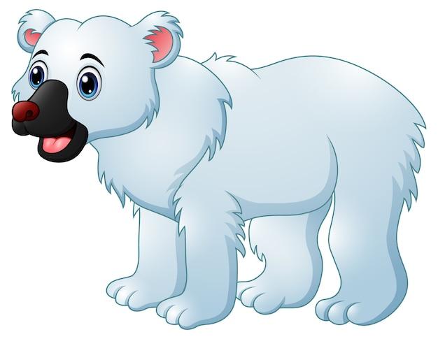 Orso polare dei cartoni animati scaricare vettori premium