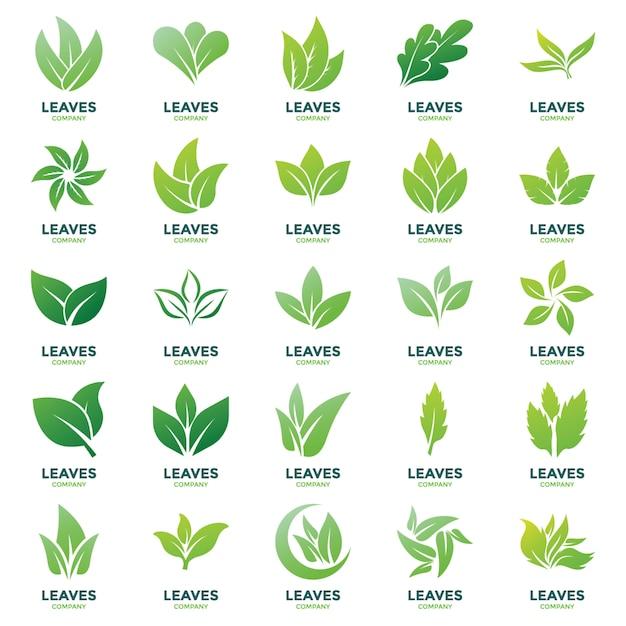 Pack di vettori logo foglie Vettore Premium
