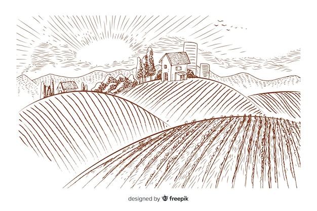 Paesaggio agricolo disegnato a mano Vettore gratuito