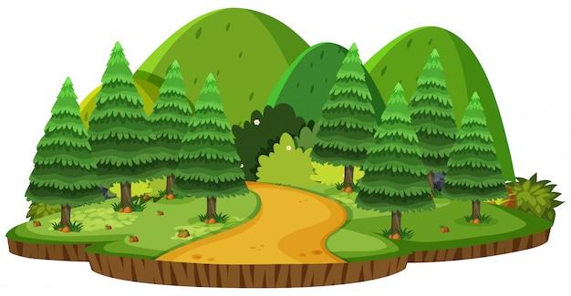 Paesaggio della natura di verdi colline e pini Vettore Premium