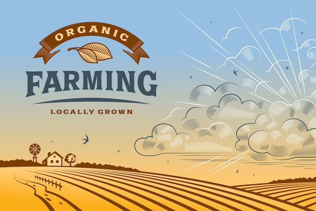 Paesaggio di agricoltura biologica Vettore Premium