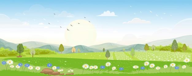 Paesaggio di panorama di estate con l'ape del miele che raccoglie polline sui fiori di mattina Vettore Premium