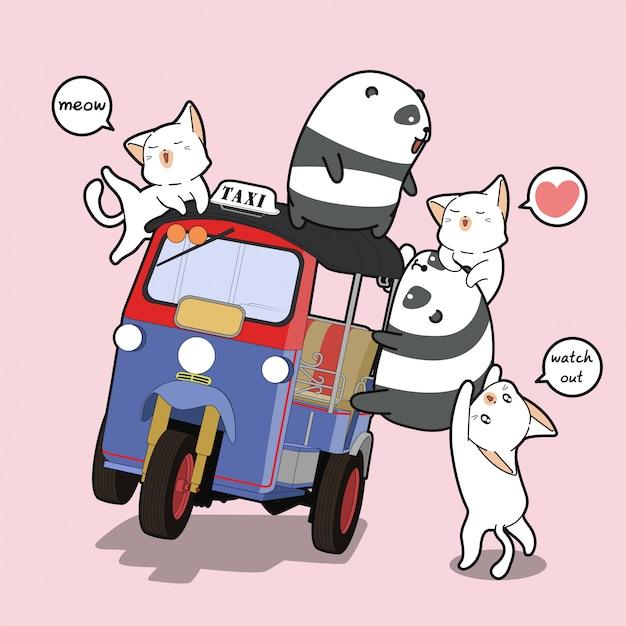 Panda e gatti kawaii con triciclo a motore Vettore Premium