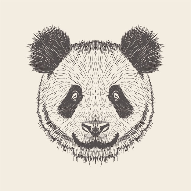 Panda illustration, design disegnato a mano. Vettore Premium