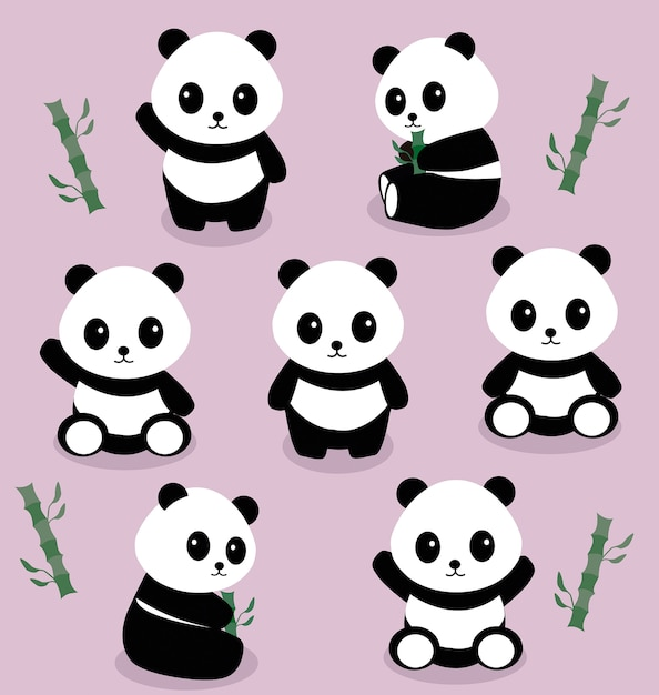 Pandas Vettore Premium