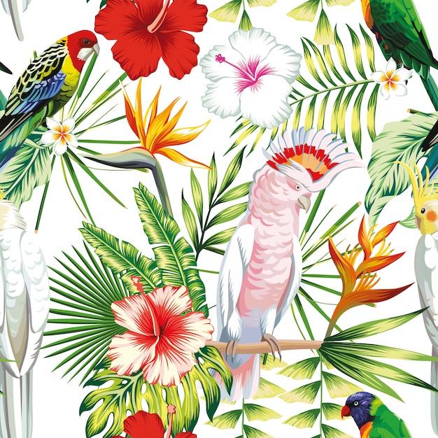 Pappagallo di uccelli multicolor esotici multicolor senza cuciture, ara con piante tropicali, foglie di palma di banana, fiori strelitzia, ibisco Vettore Premium