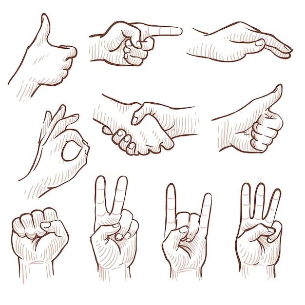 Passi le mani dell'uomo di schizzo dell'illustrazione che mostrano i diversi gesti Vettore Premium