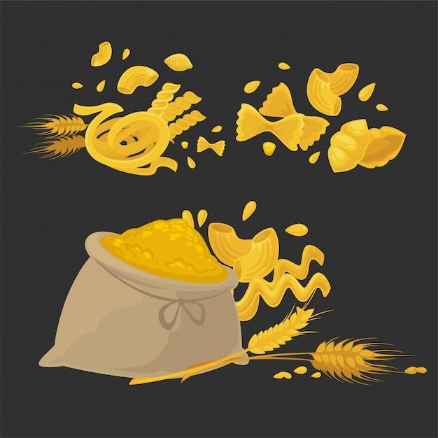 Pasta grezza di tipi solidi di grano naturale Vettore Premium