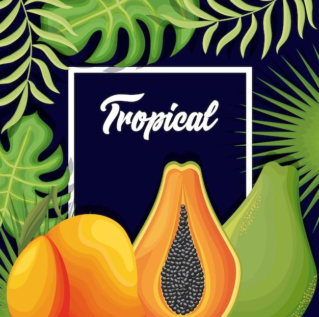 Pera fresca con mango e papaia Vettore Premium