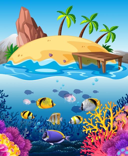 Pesce che nuota sott'acqua e isola Vettore gratuito