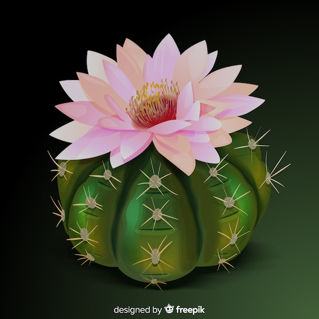 Pianta di cactus in stile realistico Vettore gratuito