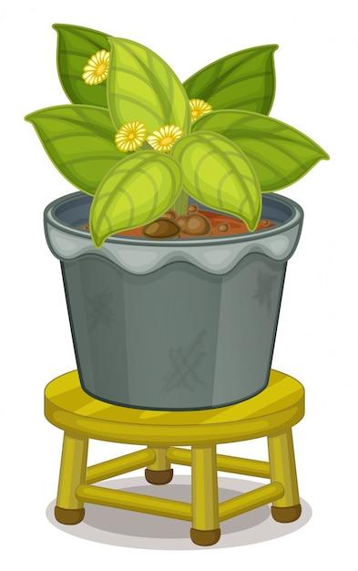 Pianta in vaso Vettore gratuito