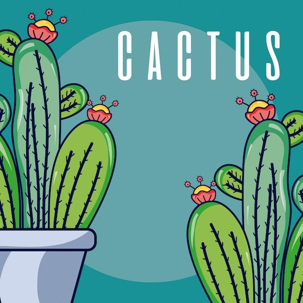 Piante di casa di cactus Vettore Premium