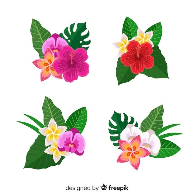 Piatti fiori e foglie tropicali Vettore gratuito