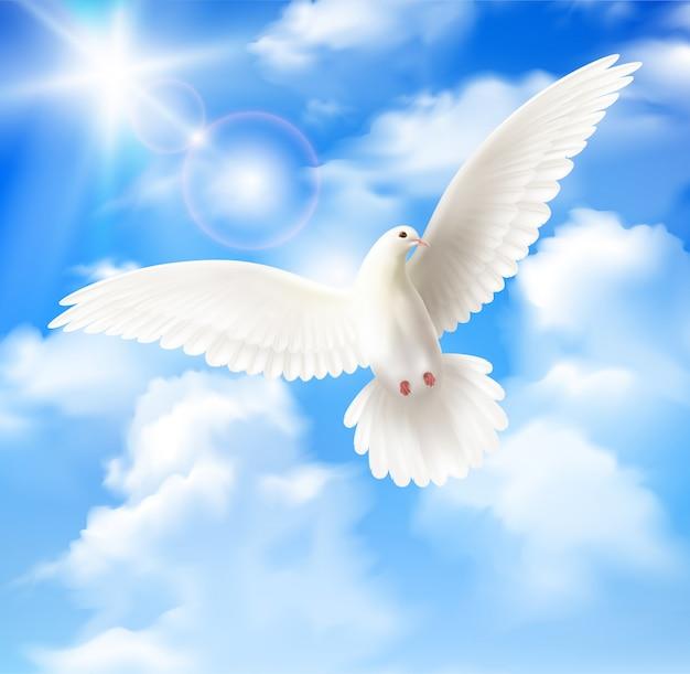 Piccione bianco con cielo blu e le nuvole Vettore gratuito