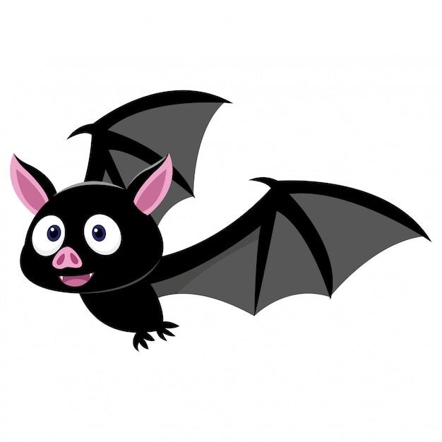 Pipistrello sveglio che cerca preda isolato su fondo bianco Vettore Premium