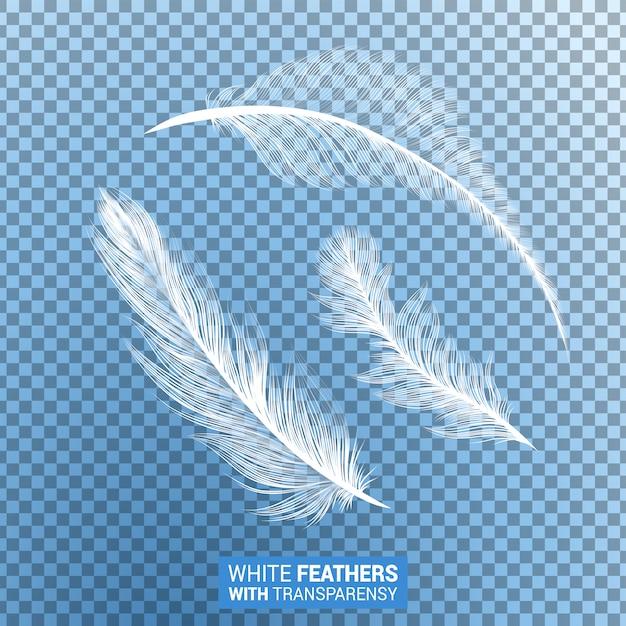 Piume bianche realistiche effetto trasparente Vettore gratuito