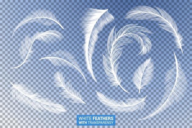 Piume bianche soffici creano un realistico effetto trasparente Vettore gratuito
