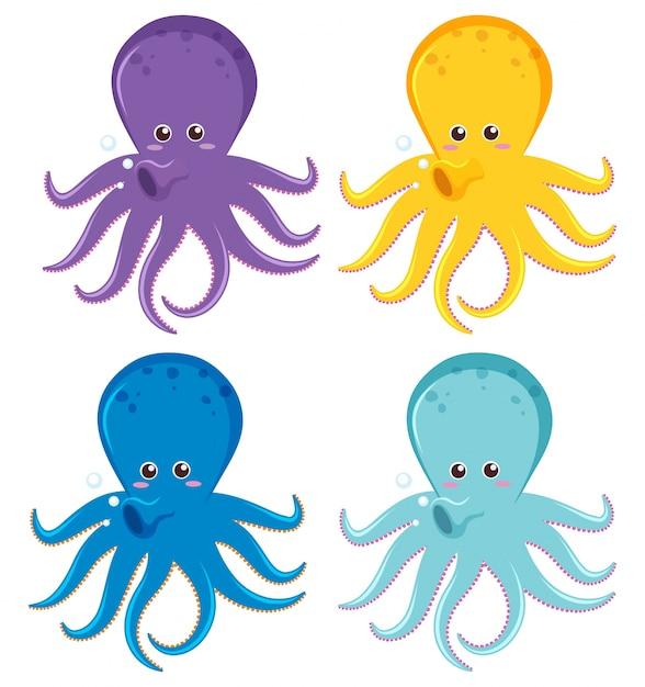 Polpo in quattro colori diversi Vettore gratuito