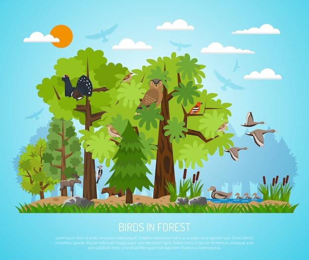 Poster di uccelli nella foresta Vettore gratuito