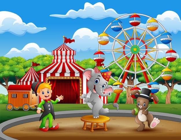 Prestazioni da istruttore circense con elefante e coniglio Vettore Premium