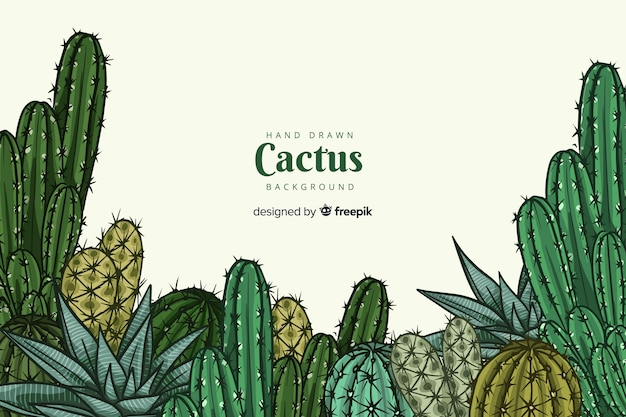 Priorità bassa del gruppo di cactus disegnato a mano Vettore gratuito
