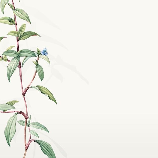 Progettazione botanica verde del fondo delle foglie Vettore gratuito