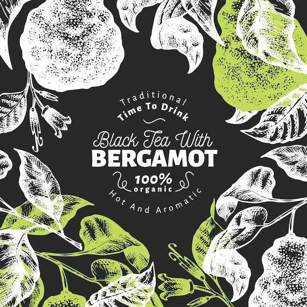 Progettazione del fondo del ramo di bergamotto. cornice di lime kaffir. frutta vettore disegnato a mano Vettore Premium