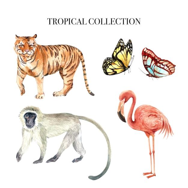 Progettazione dell'acquerello dell'elemento con l'illustrazione degli animali selvatici per uso decorativo. Vettore gratuito