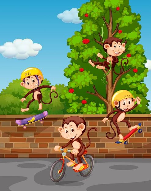 Quattro scimmie che giocano in strada Vettore gratuito