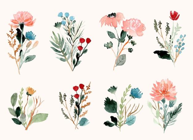 Raccolta dell'acquerello del mazzo del fiore selvaggio Vettore Premium