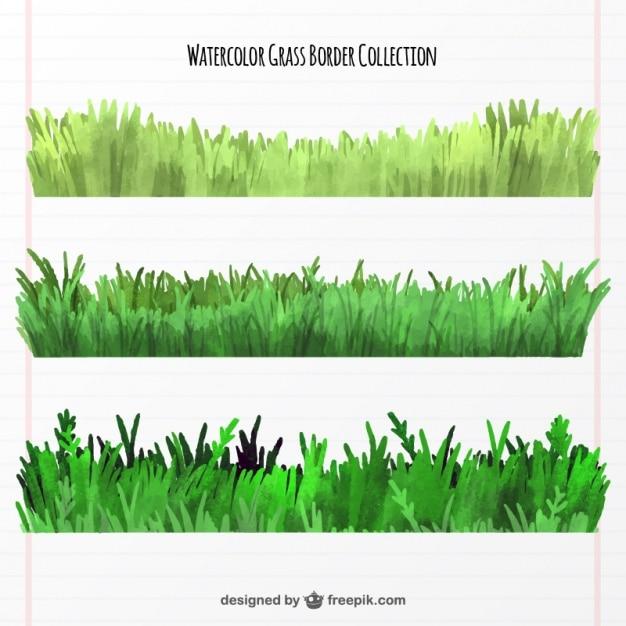 Raccolta delle frontiere erba tre acquerello Vettore gratuito