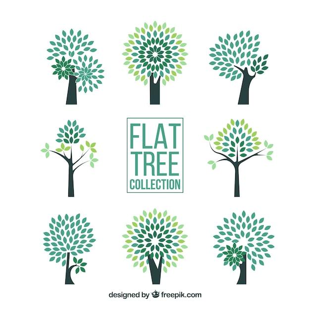 Raccolta di alberi in stile piatto Vettore gratuito