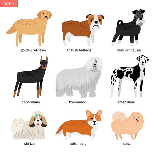 Raccolta di allevamento di cani isolata Vettore Premium