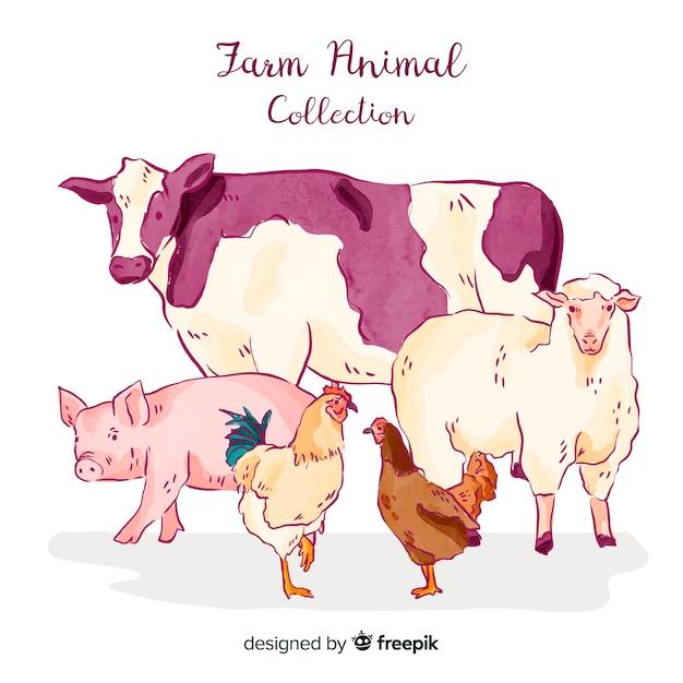 Raccolta di animali da fattoria Vettore gratuito