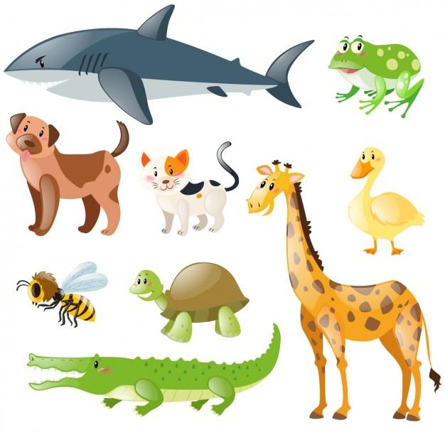 Raccolta Di Animali Domestici E Selvatici Scaricare Vettori Gratis