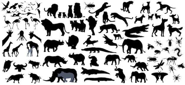 Raccolta di animali isolato su sfondo bianco Vettore Premium