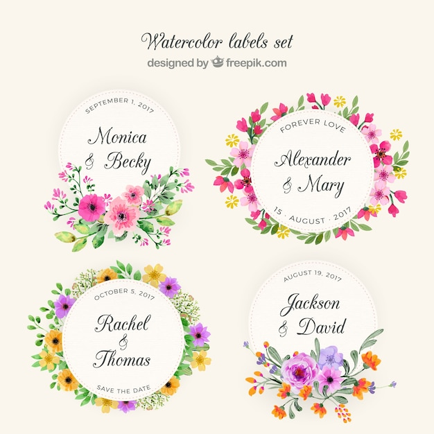 Raccolta di corona di fiori Vettore gratuito