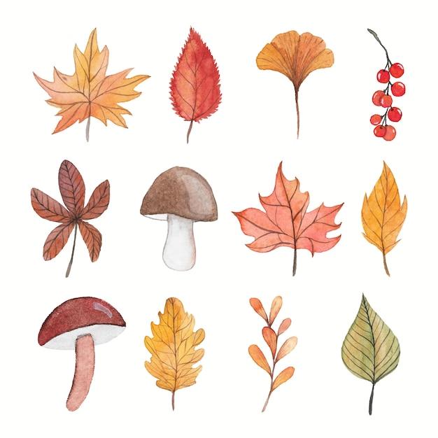 Raccolta di elementi dell'acquerello autunno Vettore Premium