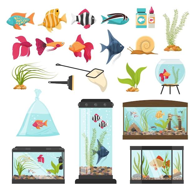 Raccolta di elementi essenziali dell'acquario Vettore gratuito