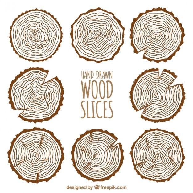 Raccolta di fette di legno Vettore gratuito