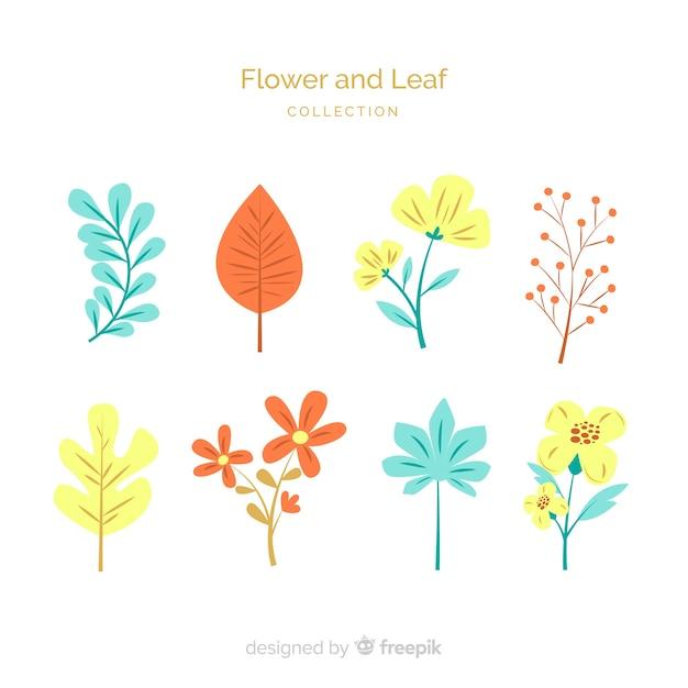 Raccolta di fiori e foglie piatte Vettore gratuito