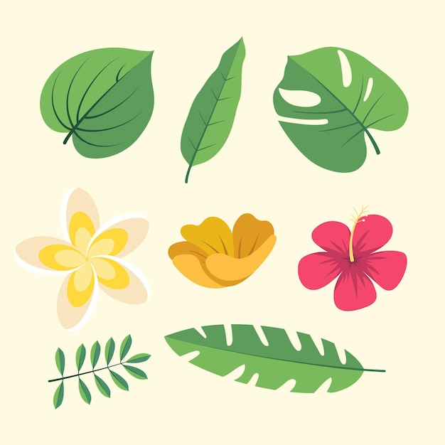 Raccolta di fiori e foglie Vettore gratuito