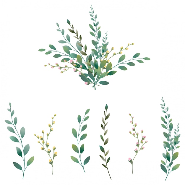 Raccolta di foglie verdi Vettore Premium