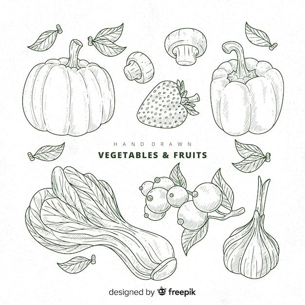 Raccolta di frutta e verdura Vettore gratuito
